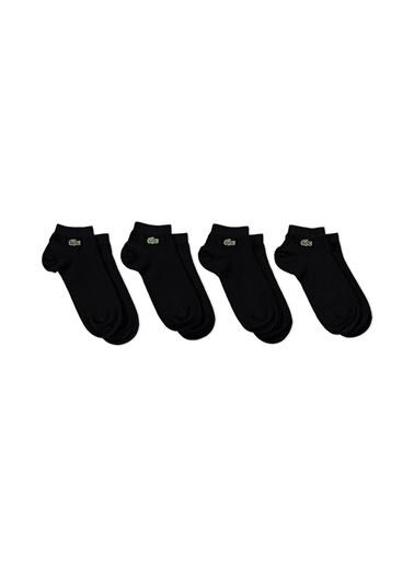 Spor Çorap-Lacoste
